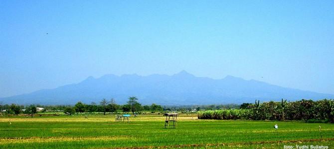 Gunung Muria dan Misteri Bangsa LeMuria